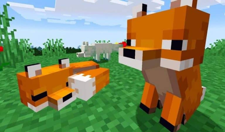 Now You Can Say Minecraft Gives A Fox